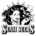 Sensi Seeds