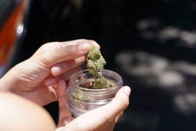 Baden-Württemberg: Neue Landesregierung lockert Cannabis-Verbot