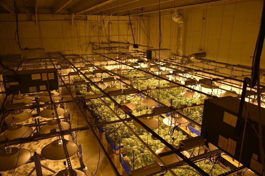 "Medizinisches Cannabis: Aphria-""Tresor"" in Neumünster nimmt Konturen an"