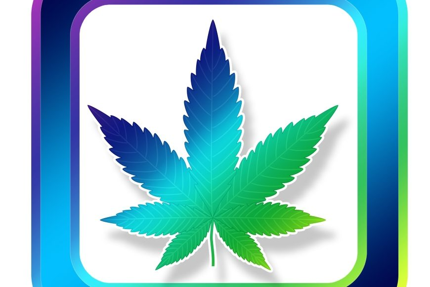 Google zeigt Cannabis-Apps die Rote Karte