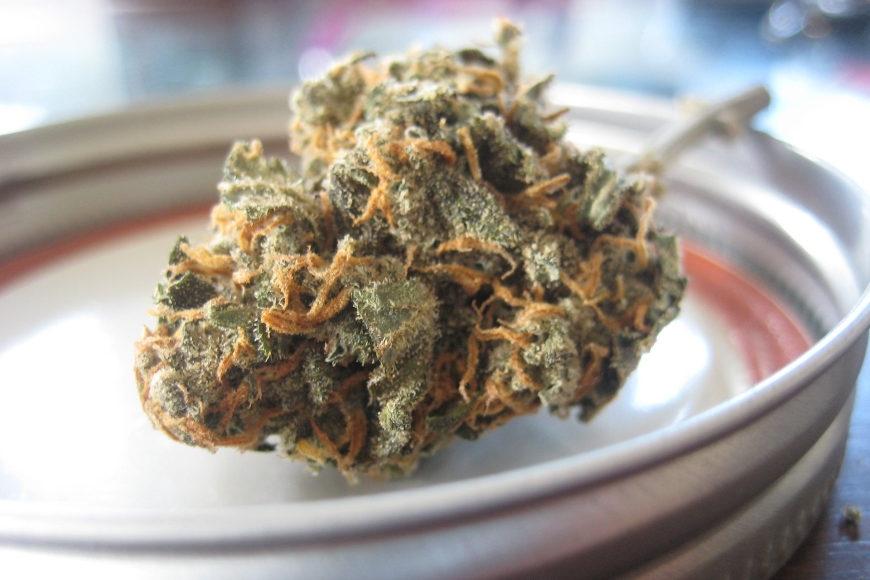 Union diskutiert über Cannabis-Freigabe – Grünes Wunder oder Nebelkerze?